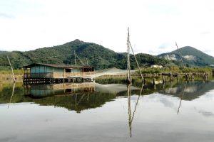 Foto da www.lipu.it