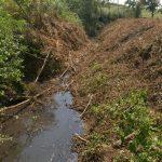 """Il torrente Sorra dopo la """"ripulitura"""" degli argini (foto Wwf Toscana)"""