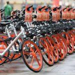 bici-bike-sharing-olandiamo-firenze-ambiente-toscana
