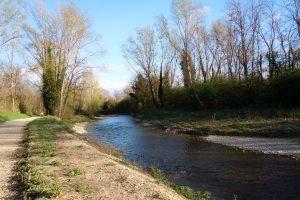 Un tratto del torrente Pesa