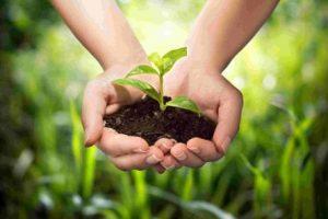 Laurea_agricoltura sostenibile