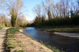 Il fiume Pesa
