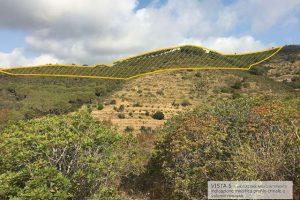 Il crinale di collina che sarebbe destinato a scomparire (Legambiente Arcipelago Toscano)