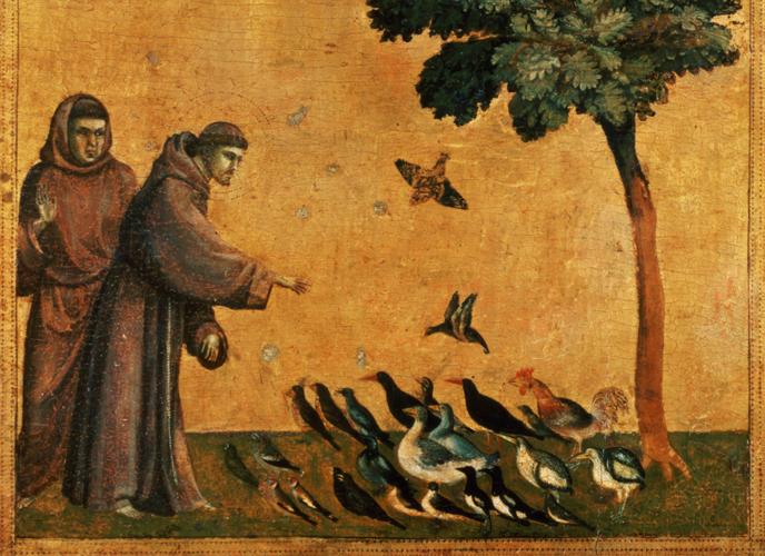 """Un particolare dell'opera """"La predica agli uccelli"""" di Giotto, 1295-1299."""