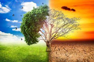 Caambiamenti climatici