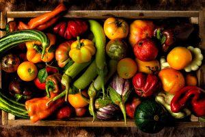 bio-street-good-foodpath-naturasi-ambiente-toscana