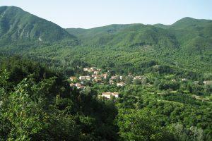 Castagno d'Andrea. (Foto da www.parcoforestecasentinesi.it).