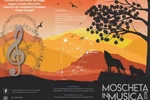 moscheta-musica-ambiente-toscana