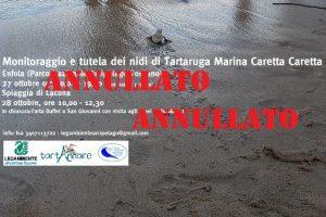 ANNULLATO Corso tartarughe