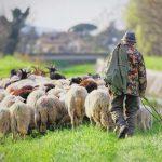 Foto da Cia Toscana