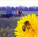 Pesticidi con ape
