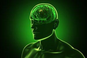psicologia-sostenibilità-toscana-ambiente