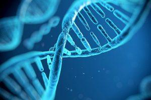 genoma-dina-toscana-ambiente