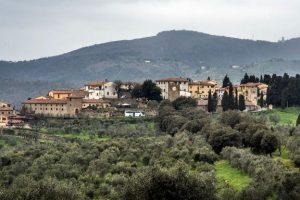Carmignano_rinnovo ordinanza anti glifosato