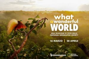 What a wonderful World_Cecina