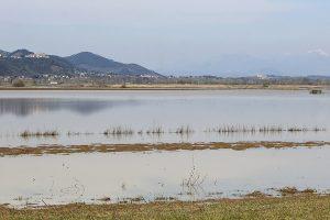 Lago di Bientina. (Foto da it.wikipedia.org).