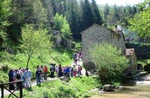 Mulino di Fiumicello (archivio Parco)