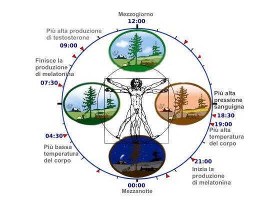 cronobiologia-toscana-ambiente