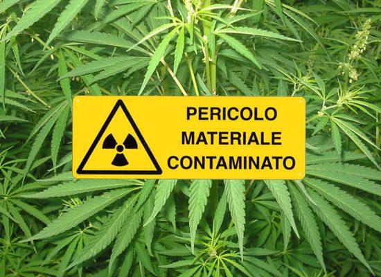 fitoterapia-contaminazione-toscana-ambiente