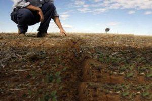 terreni-abbandonati-toscana-ambiente