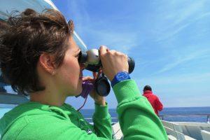 Avvistamento in mare
