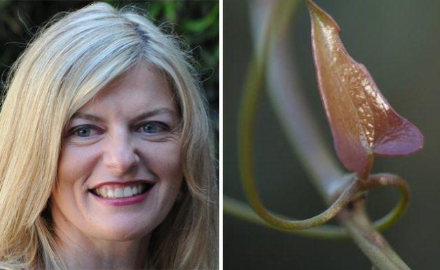 Barbara Mazzolai. (Foto da Unipi).