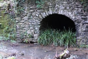 Grotta del Ritrecine Mulino di Bongi