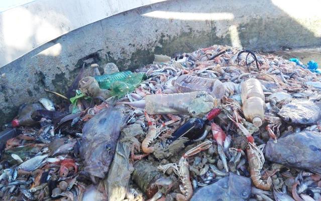 pescatori-bocca-di-serchio-plastica-toscana-ambiente