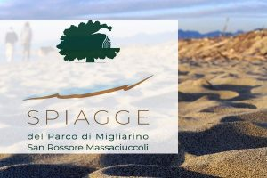 spiagge-parco-migliarino-san-rossore-toscana-ambiente