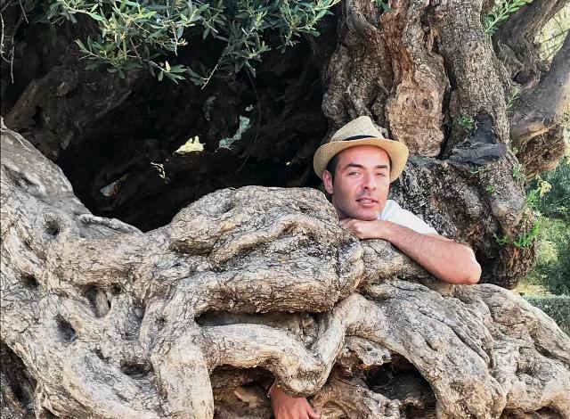 Dario con albero