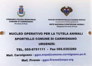 Carmignano_sportello animali.1