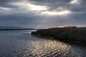 Oasi Lago di Burano_1