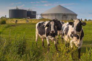 biogas-toscana-ambiente