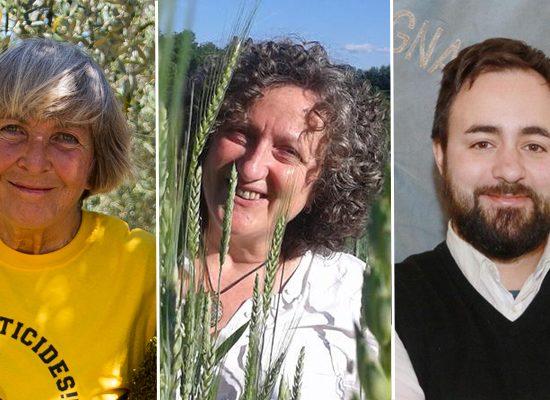 Da sinistra Patrizia Gentilini, Maria Grazia Mammuccini ed Edoardo Prestanti