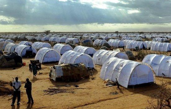 Foto da Unhcr.org