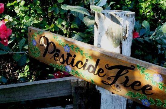 pesticidi-1170x550_c