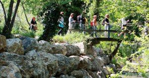Escursione nella tenuta di Paganico