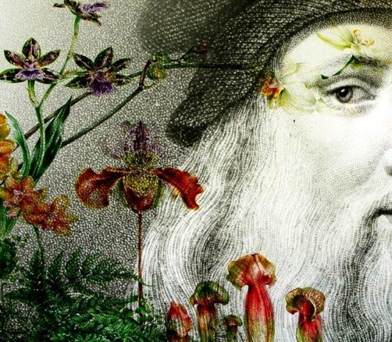 genio e botanica