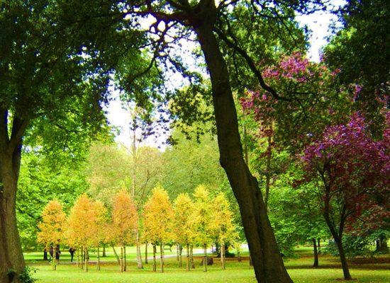 parchi-comuni-toscana-ambiente