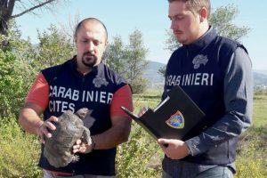 Carabinieri forestali del nucleo CITES