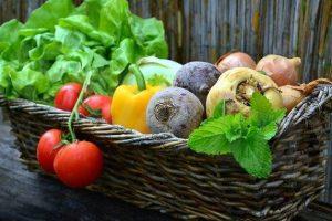 frutta-verdura-clima-Toscana-ambiente