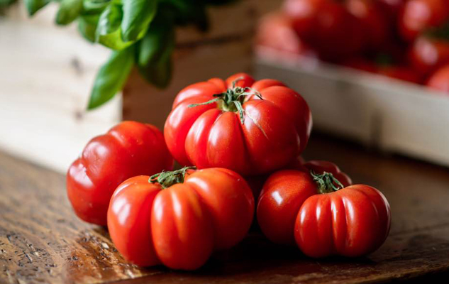 pomodori-orticoltura-toscana-ambiente