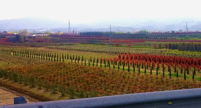 Noi ambientalisti di Pistoia e Prato: ci chiamano esasperati? Ne siamo orgogliosi - Redazione di Associazione culturale Toscana Chianti Ambiente
