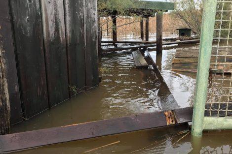 Pontili e strutture di fruizione distrutti dall'acqua