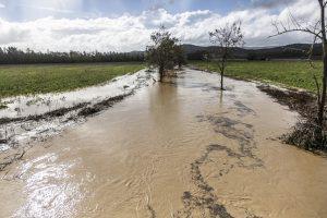 esondazione-fiumi-toscana-ambiente