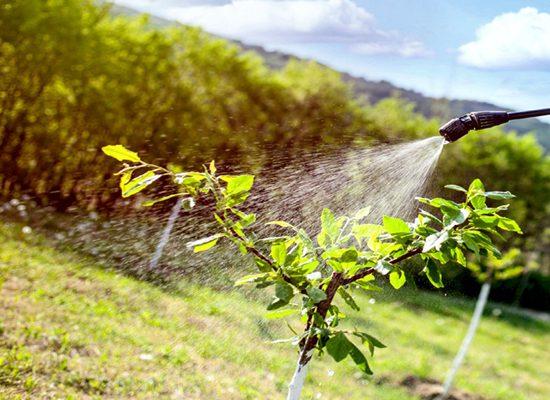 fitofarmaci-pesticidi-toscana-ambiente
