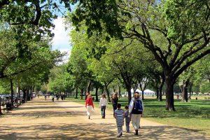 verde-urbano-firenze-toscana-ambiente