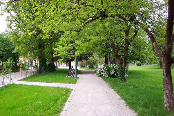 verde-urbano-toscana-ambiente