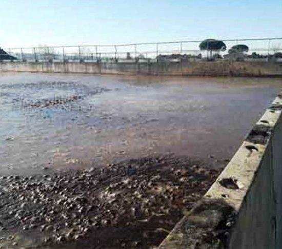 Una vasca scoperta contenente sansa di olive (foto Arpat)