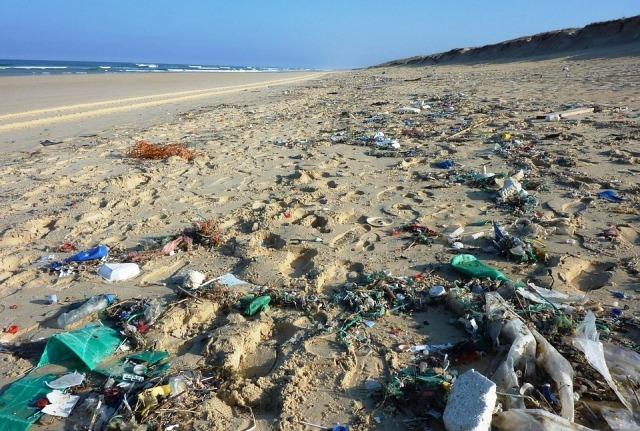 rifiuti marini